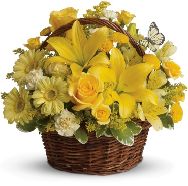 Basket Full of Yellows