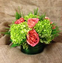 Green Hydrange abd Rose Centerpiece