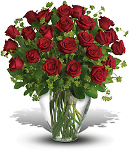 2 Dozen Long Stemmed Premium Red Roses